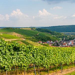 Weinstraße Taubertal: Im Wohnmobil durch drei Weinanbaugebiete